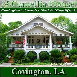 Camellia House Bed & Breakfast