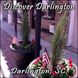Darlington Planning & Economic Development