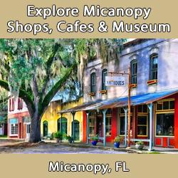 Micanopy Community Artisans and Merchant Council