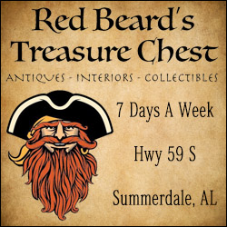 Red Beard's Treasure Chest